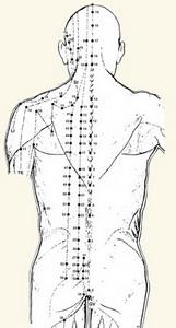 back-belt-man